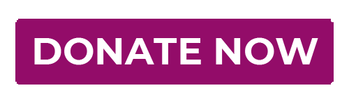 dONATE Now Button - PURPLE